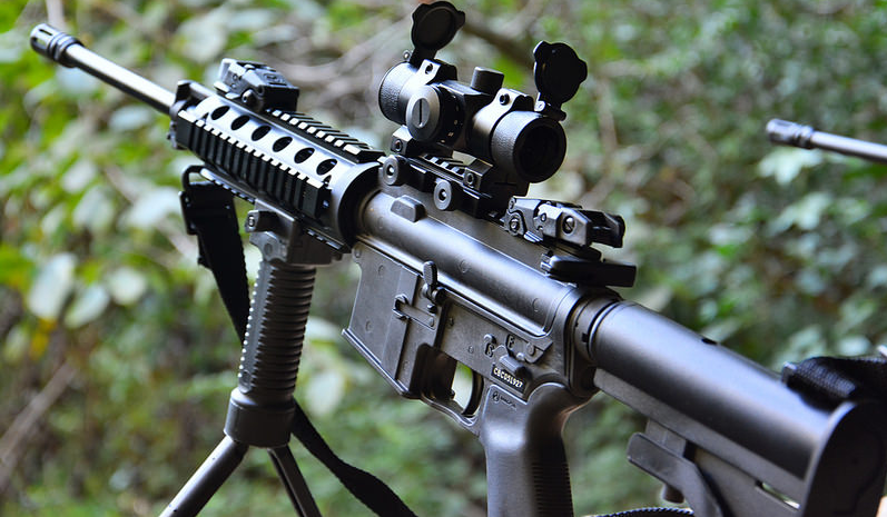 Ar 15 rifle with a plant behind
