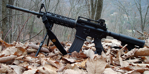 AR 15 on top of dried leaves
